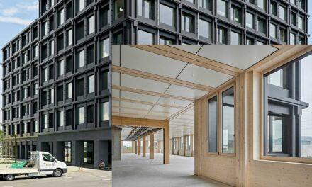 Bauen mit Holz aus dem Schweizer Wald: Win-win für alle
