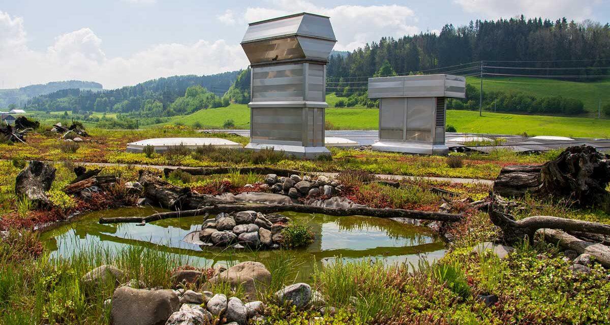 Nachhaltigkeit fängt oben an – auf dem Dach